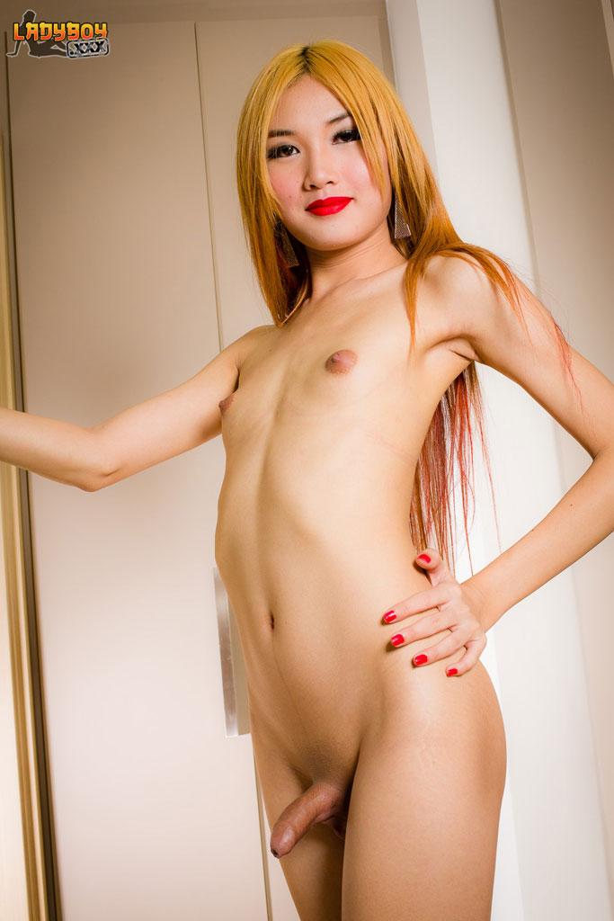 asian shemale girl xxx - Ladyboy girl porn - Meet stunning grooby newbie fossy jpg 683x1024