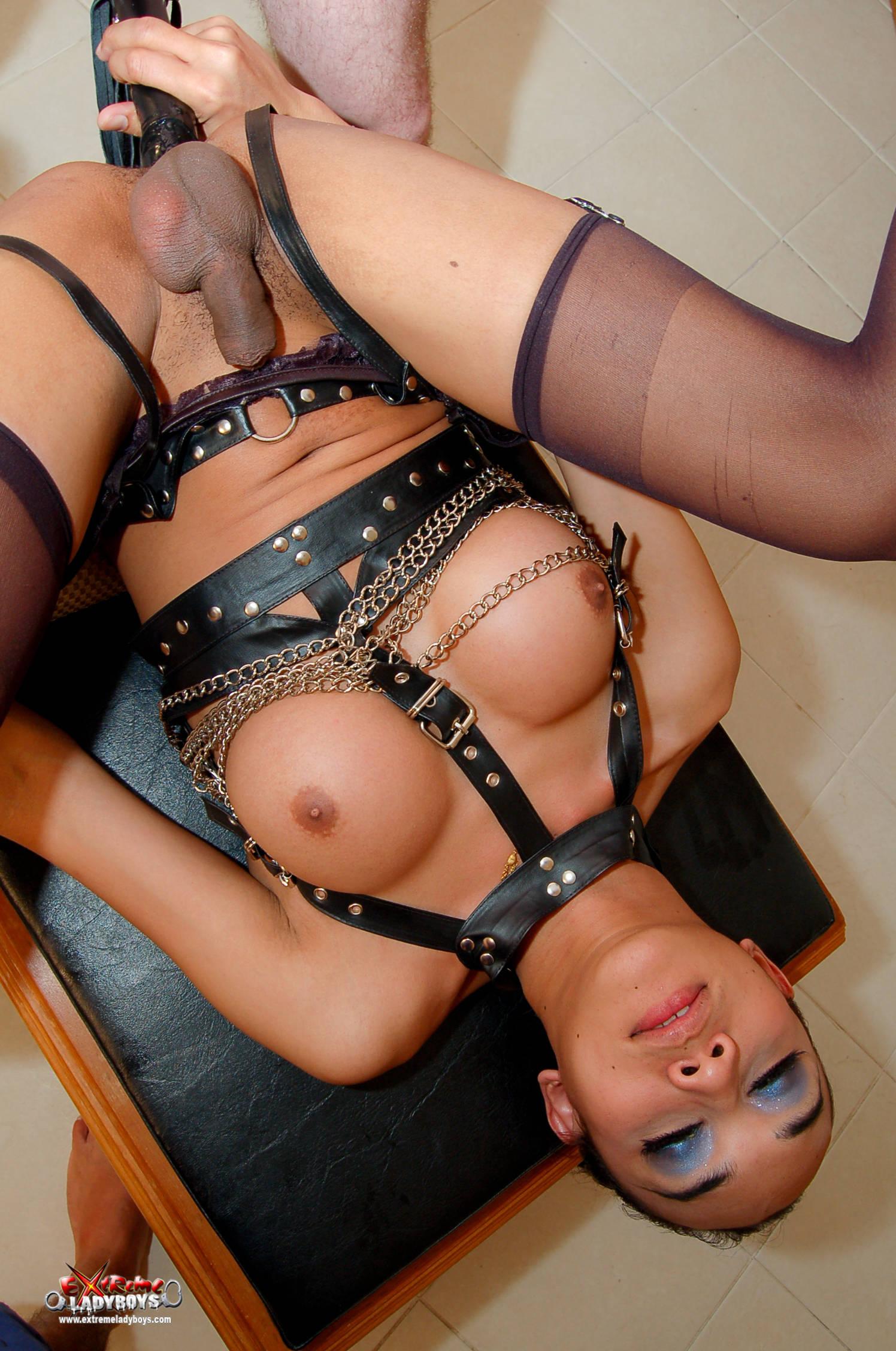 Extreme ladyboy mistress